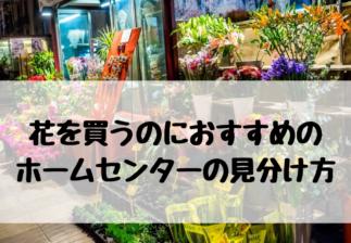花を買うのにおすすめの ホームセンターの見分け方
