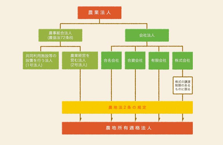 農業法人体系
