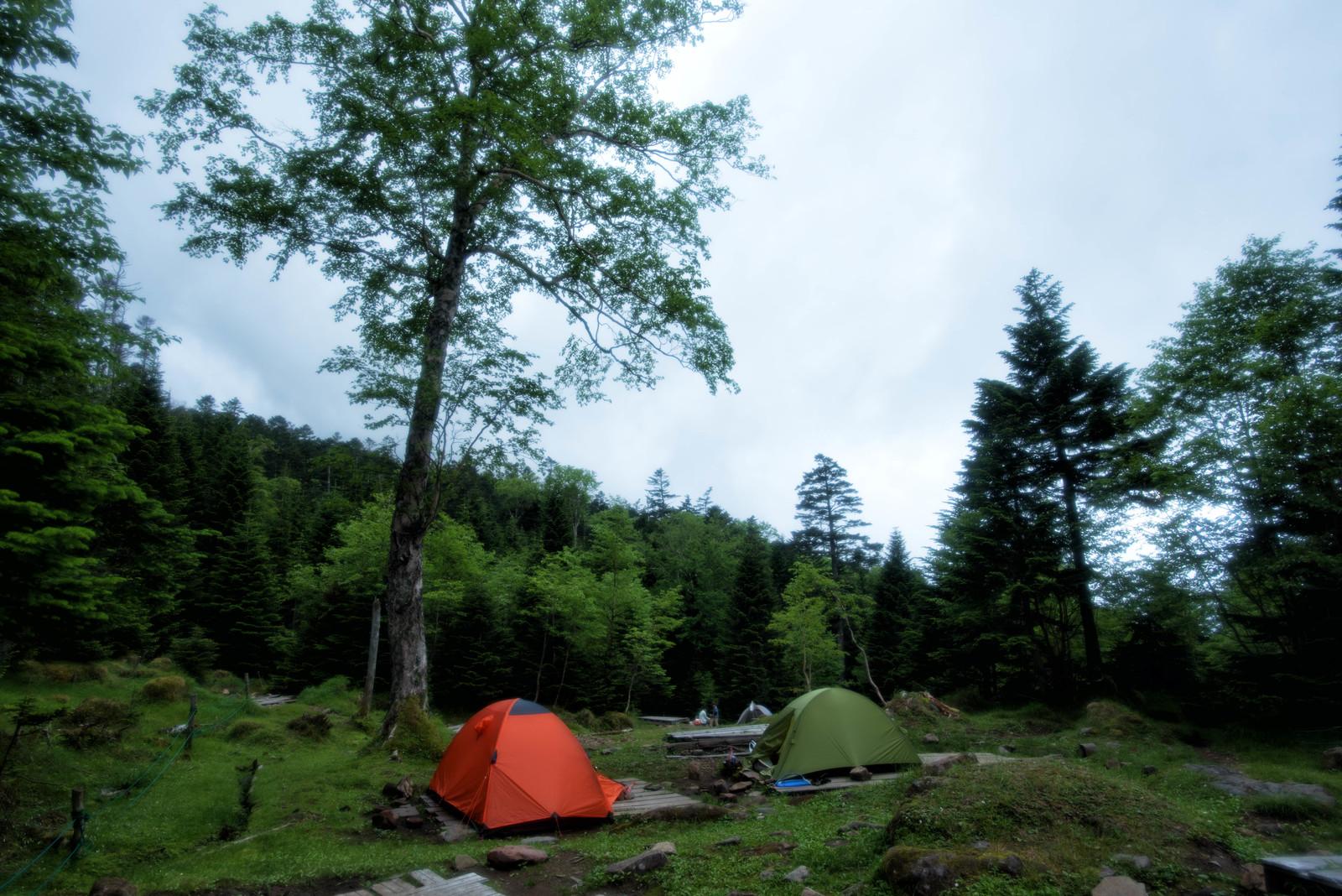 山を買う-キャンプ場