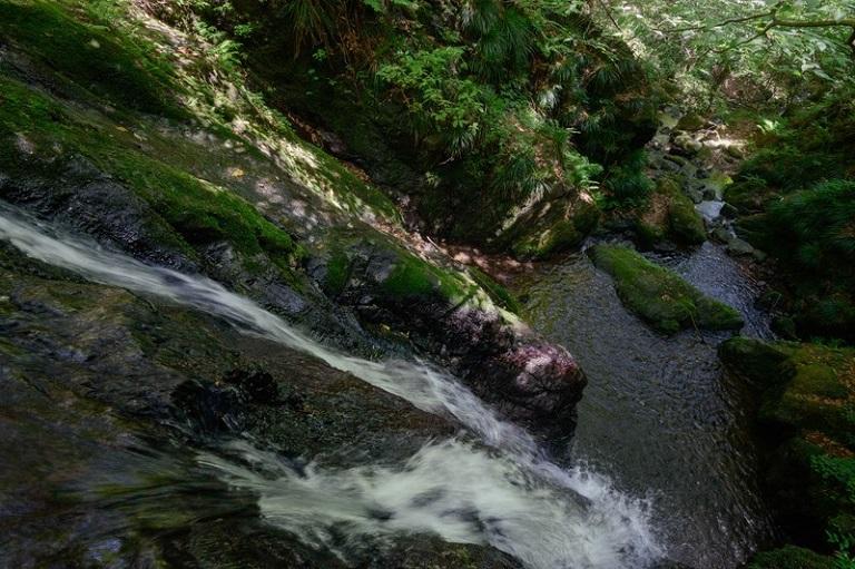 山を買う方法と注意点-インフラ-水道